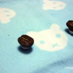 コーヒー豆マグネット